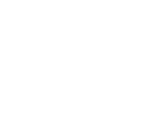 Logo of Leesfield Scolaro, P.A.